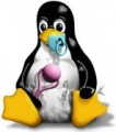 Tux-linux-peng-baby-michael-rabe-sml.jpg